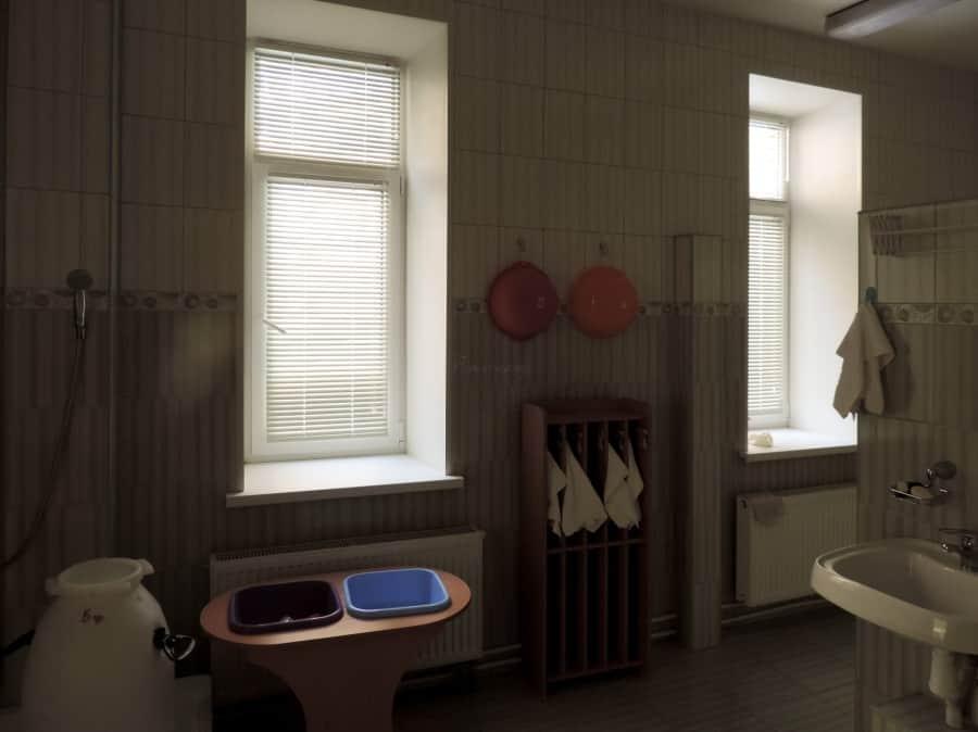 Фото штор 35: жалюзи, плиссе, рулонные шторы